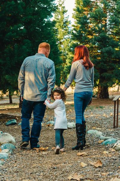 Bradford-Family-Session-03982.jpg