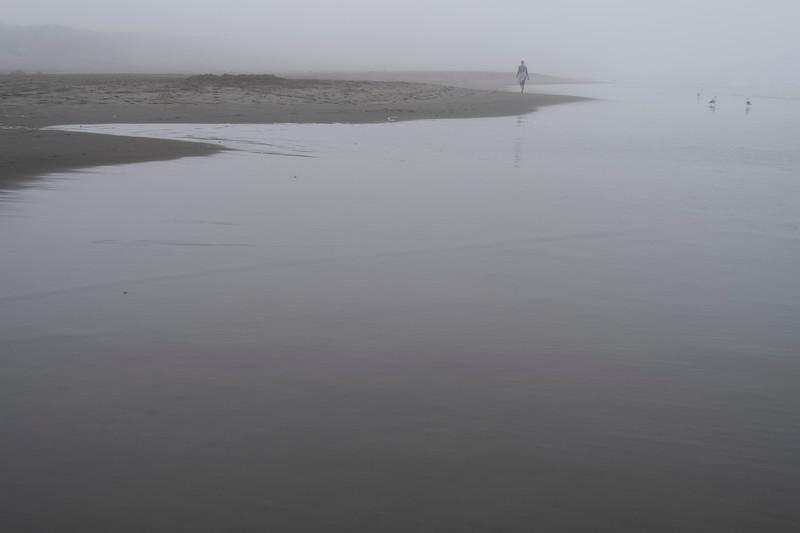 ocean beach quarantine 15258610-5-20.jpg