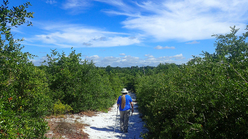 Sandra descending a hill in scrub forest