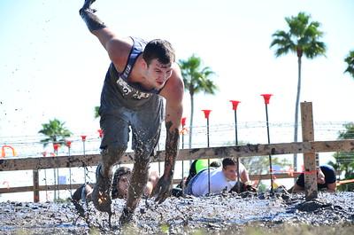 Track, Marathons, & Mudders