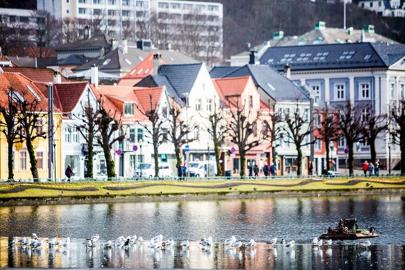 Norway_Odyssey_332.jpg