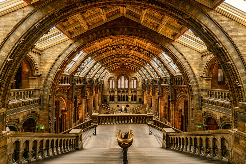 A Natural history museum.jpg