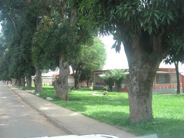 Dundo rua do Museu