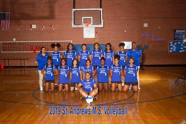 2019 Volleyball