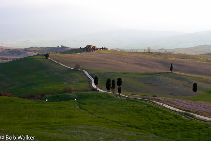 If you watched the movie 'The Gladiator' with Russel Crowe, this drive was used in the scene where Crowe comes back to his home, only to find his wife and son had been murdered. Very scenic place near Pienza.