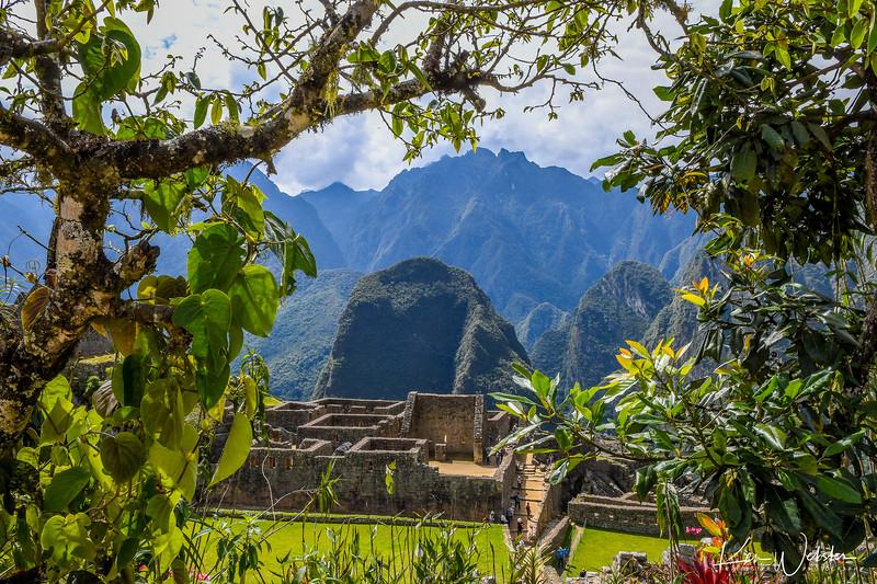 2018 Machu Picchu-19.jpg