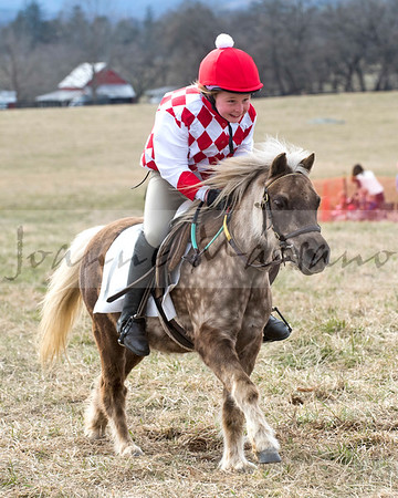 Piedmont  Fox Hounds Point to Point 3-24-18