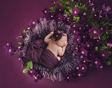 Violet J's Newborn Session