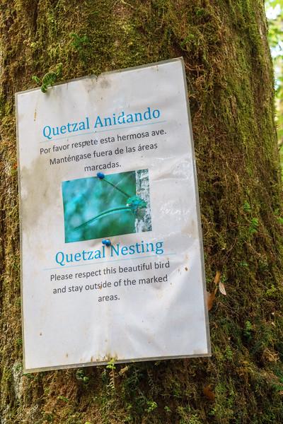 Costa Rica 2015-5280.jpg