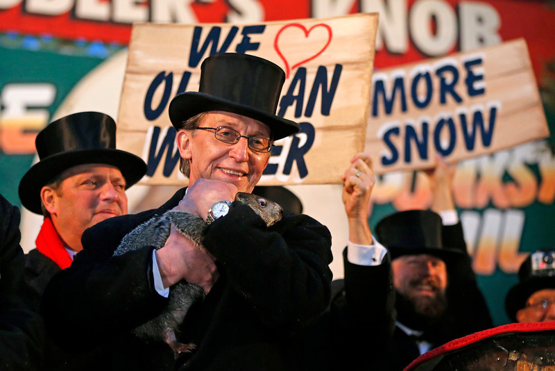 . Punxsutawney Phil is held by Ron Ploucha after emerging from his burrow Sunday, Feb. 2, 2014, on Gobblers Knob in Punxsutawney, Pa., to see his shadow and forecast six more weeks of winter weather. The prediction this year fell on the same day as Super Bowl Sunday.  (AP Photo/Gene J. Puskar)