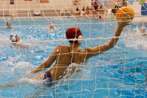 Carleton Ravens Mens and Womens Water Polo
