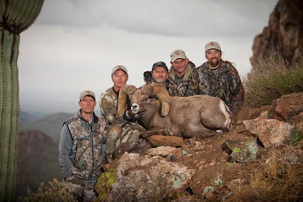Ernie's 2011 Big Horn Sheep