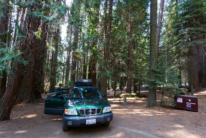 Sequoia_0872.jpg