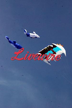 Prairie Winds Kite Fly 2013