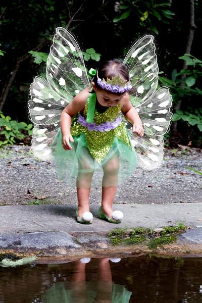 795A1967 fairy.jpg