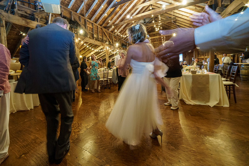 20190601-190644_[Deb and Steve - the reception]_0483.jpg