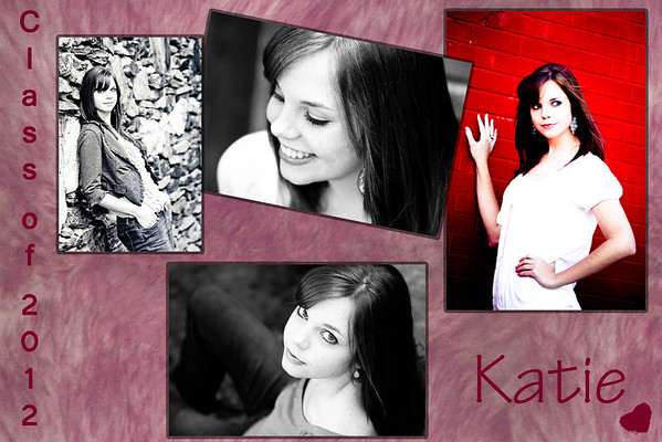 2011 Katie Senior Projects
