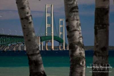 Mackinac Bridge Area