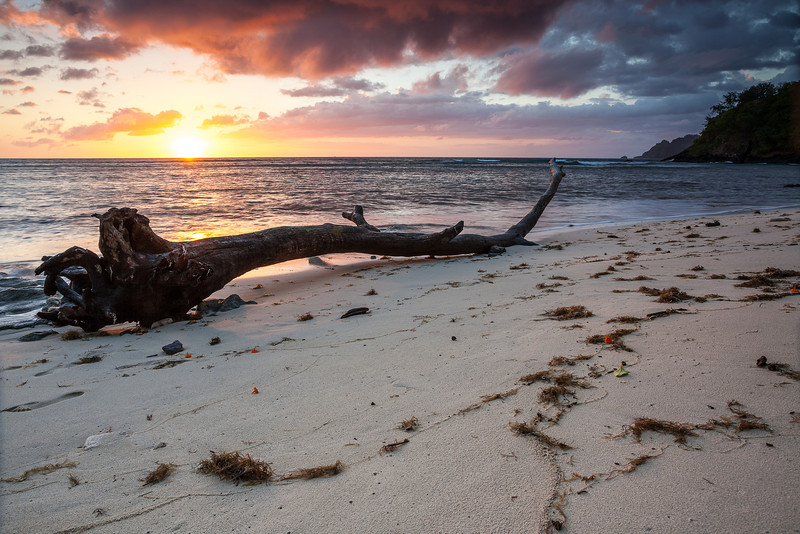 Fiji-1.jpg