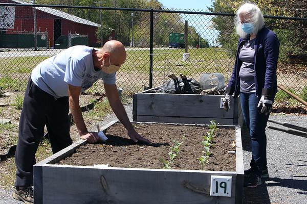 Ayer Community Garden 051121