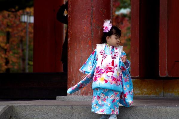 Shichigosan Festival