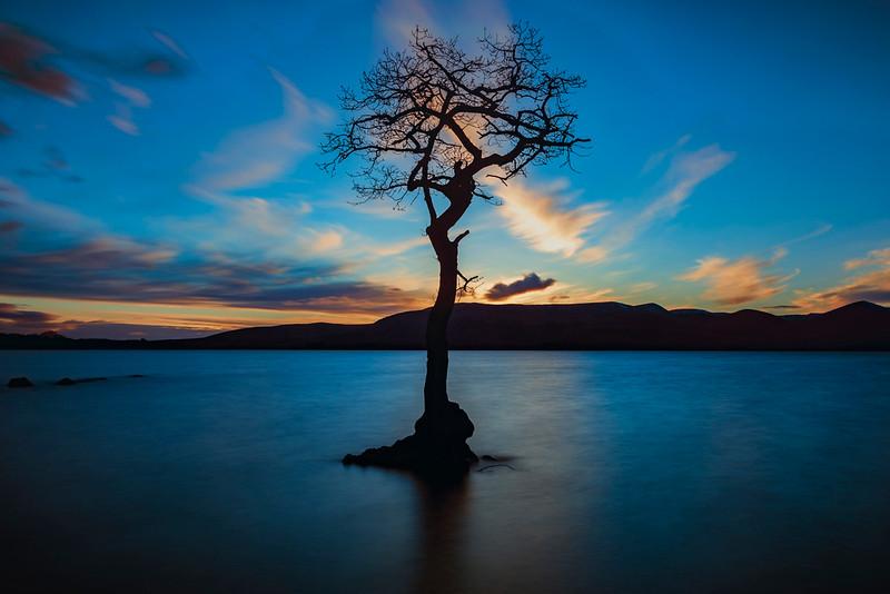Loch Lomond_010317_0028-1_24x16.jpg
