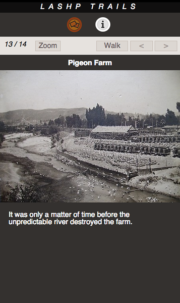 PIGEON FARM 13.png