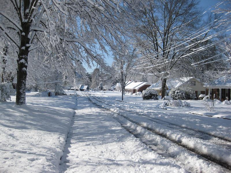 Snow in Jackson_20090301_013.JPG