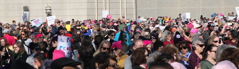 Women's March on the Polls (Winston-Salem, NC) Gallery One of Two