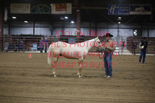 Midwest Ranch Horse Classic