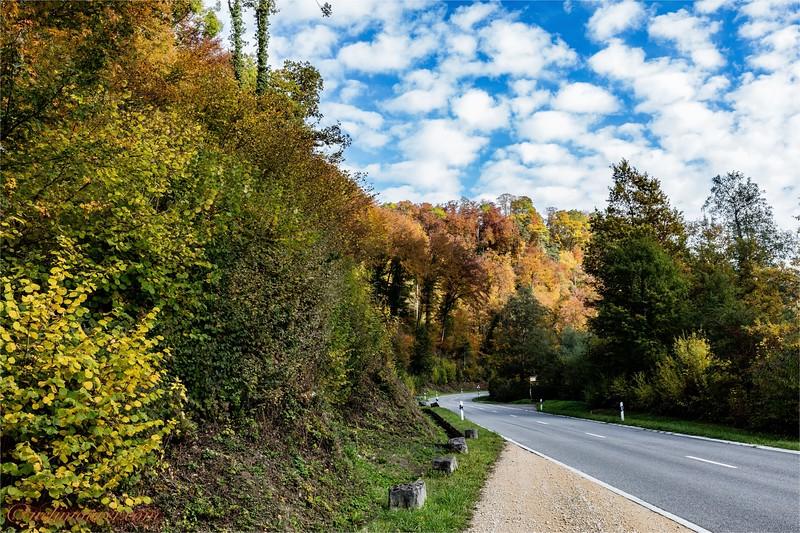 2016-10-22 Herbststimmung Aargau 0U5A1334.jpg