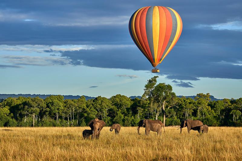 Maasai Mara_DSC09234 1.jpg