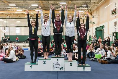 Madison Memorial Gymnastics - Mar 01, 2014