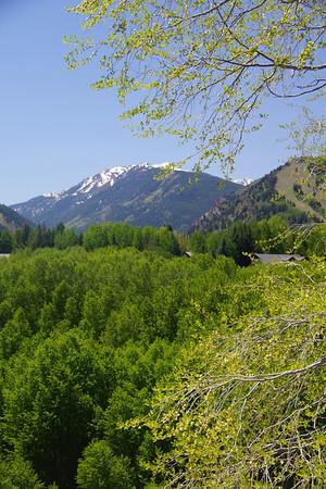 2012 Aspen