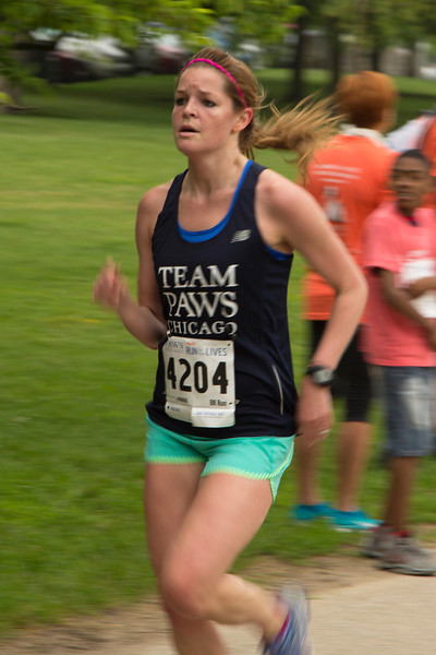 TEAM Paws Runner 4204 (20140621-RfTL-379).jpg