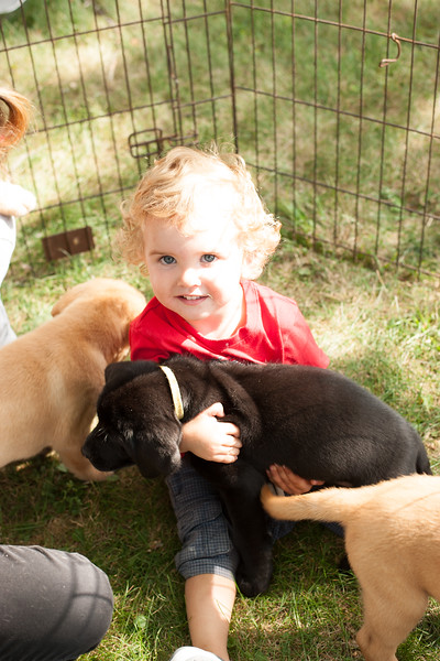 Jes bday and puppies-38.JPG