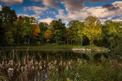 Rochester Seasons