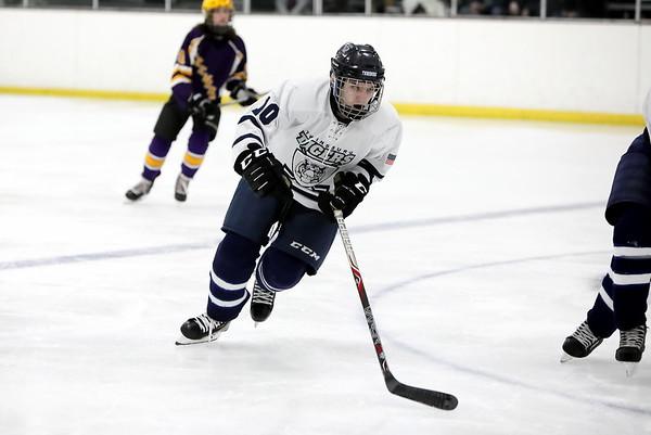 20200202 Hockey - Lakewood v Twinsburg
