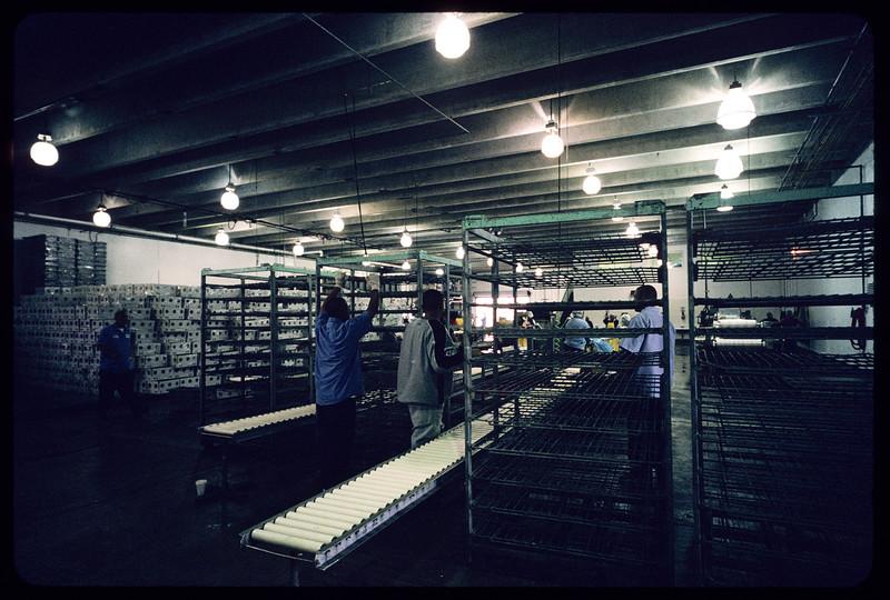 Tri-Marine Fish Company, San Pedro, 2004