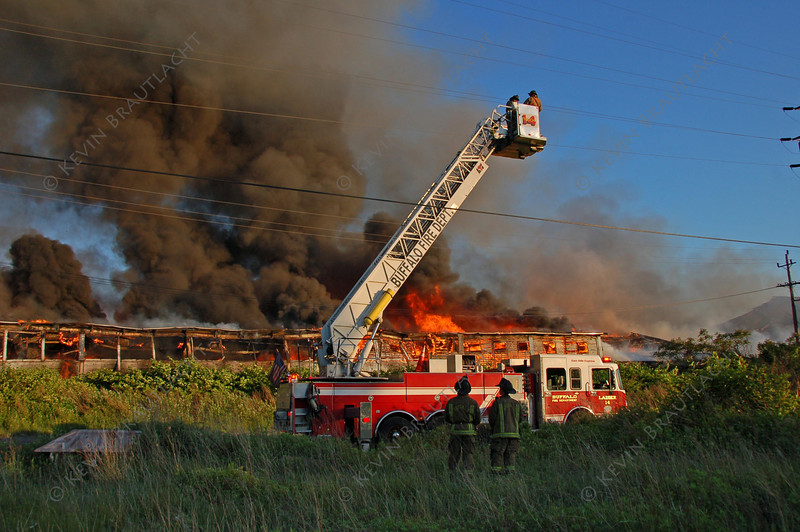 Buffalo Fire Buy Photo