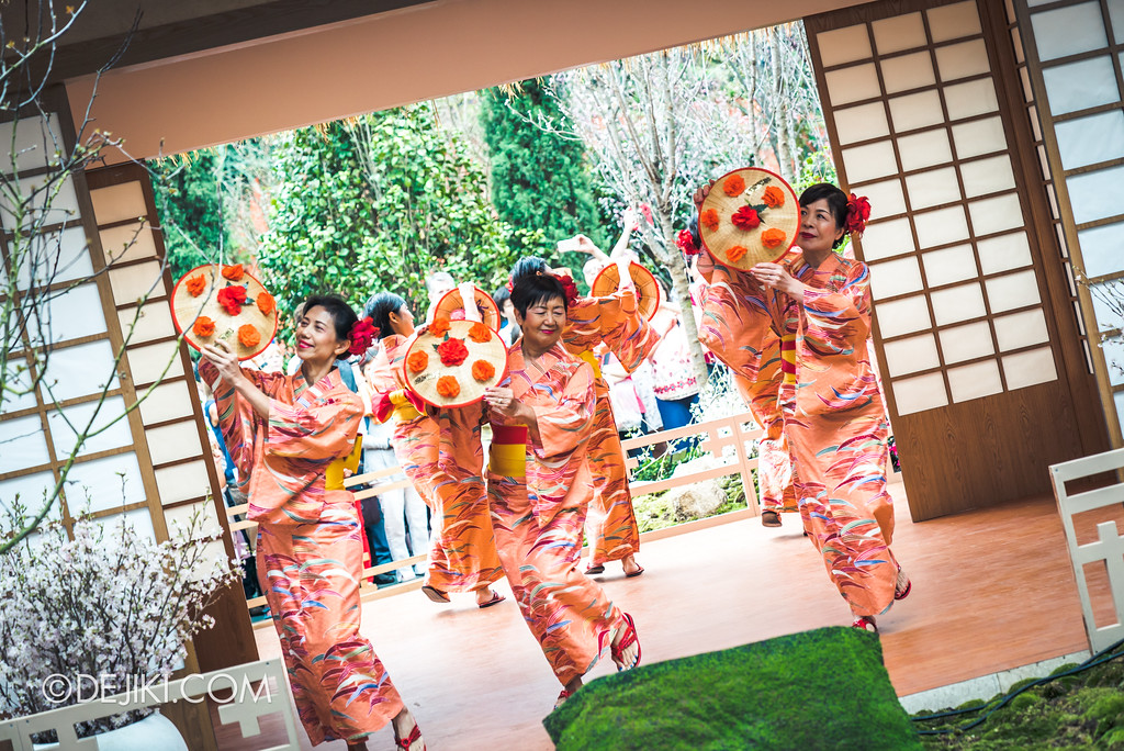 Gardens by the Bay - Sakura Matsuri 2018 floral display - flower field performance Minyo club