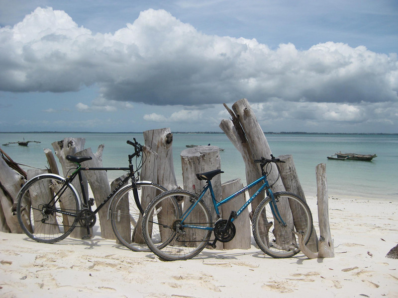 Our trusty but small bikes
