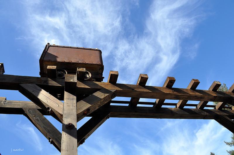 timbered 10-14-2011.jpg