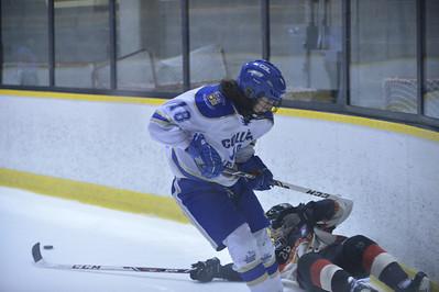 U15-Hockey-Montreal-29 Mars 2014