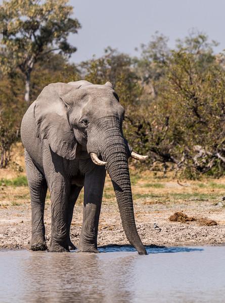 Botswana_June_2017 (1909 of 6179).jpg