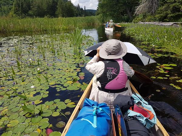 2018-July: Canoe-trip w JJIE (Opeongo, Proulx and Big Crow Lakes)