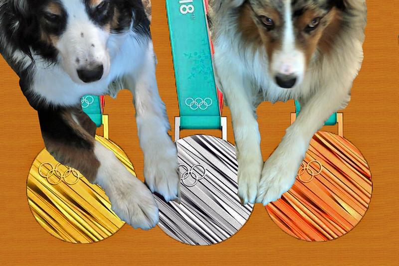 OlympicMedals.GaWy_1200x800.jpg