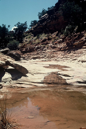 Canyonlands River Trip and archeological survey 1976