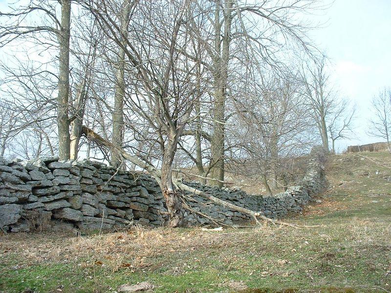 a pretty impressive rock wall that divides the farms