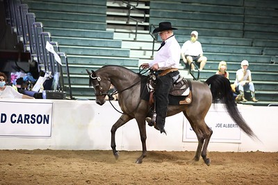 100.Spotlight Futurity Western Pls 3 & 4 Yr Olds